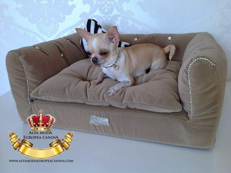 camas para perros peque os un lujo