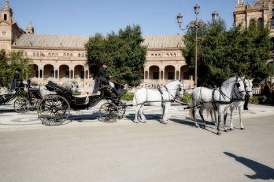 Alquiler de coches de caballos para bodas en sevilla for Busco piso en alquiler en sevilla